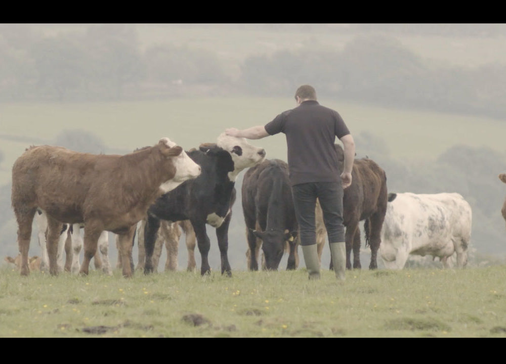 Facebook |  Mountain Meat Company